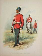 1905 ANTIQUE MILITARY PRINT ~ 1st BATTALION VICTORIAN INFANTRY BRITISH IMPERIAL