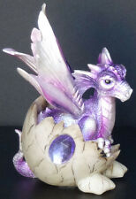 AMETHYST   Birthstone Dragon in Shell  FEBRUARY Figure Statue H5.5""