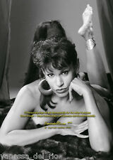 Vanessa del Rio Photo Collectible BARBARA NITKE 8x10 Sign Aft BUY w/COA