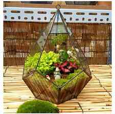 Modern Artistic Clear Hanging Air Planter Tear Diamond Glass Geometric Terrarium