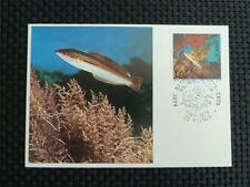 FRANCE MK 1978 FISH ANIMALS FISCHE MAXIMUMKARTE CARTE MAXIMUM CARD MC CM c968