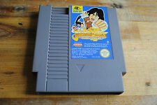Jeu JACKIE CHAN'S ACTION KUNG FU pour Nintendo NES