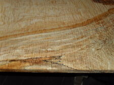"4/4 XXEXTREME SPALTED CURLY TIGER HARD SUGAR MAPLE lumber 36"" x 17 1/2""x 7/8"""