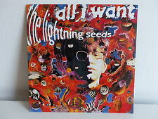 THE LIGHTNING SEEDS All i want IND 602 7