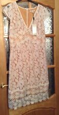 BNWT��Next��Size 12 Tall Women's Ivory Lace Mix Floral Dress Beige Lining New