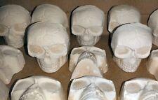 28 Large Skulls. White clay, shooting target, air rifle target, BB plinking fun