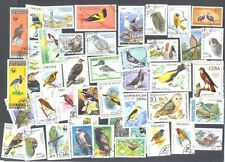 Birds 1000 all different stamps collection-mainly large -medium all world