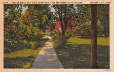 Johnson City Tennessee State College Campus Scene Antique Postcard J56437