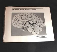 Atlas of Basic Neuroanatomy Softcover Book Paul Young Brain Anatomy Pictures