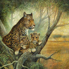 """Oil Painting Printed On Canvas 12x16"""" Modern Wall flowersCanvas Art NO frame"""