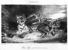 Eugene Delacroix Original Lithograph Young Tiger Playing With Its Mother Prints