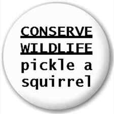Small 25mm Lapel Pin Button Badge Novelty Pickle A Squirrel