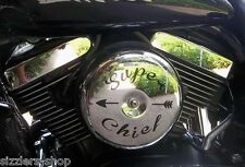 Air Cleaner Filter decals cool on Kawasaki Drifter chief 800 Indian Motorcycle