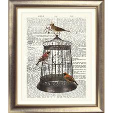 Impresión de arte en Original Antiguo Libro página Aves De Jaula Vintage Imagen Jaula De Llaves