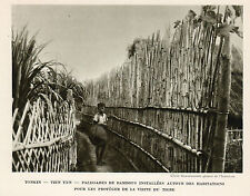TONKIN TIEN YEN PALISSADE BAMBOUS PROTECTION TIGRE IMAGE 1939 OLD PRINT
