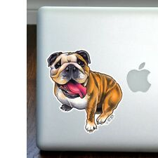 English Bulldog Full Color Large Decal - NEW - FREE SHIPPING - Mailed next day