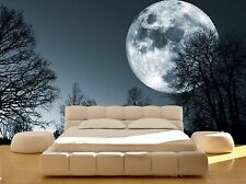 Forest Night Trees Full Moon Dark Wall Mural Photo Wallpaper GIANT WALL DECOR