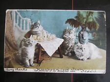 old Hartmann postcard, The Autocrat of the Breakfast table, Photo Landor, cats