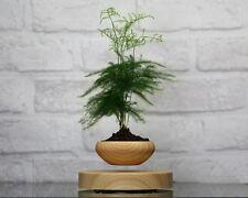 magnetic levitation air bonsai Suspension flower pot potted plant levitate tubs