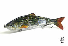 HOLOGRAPHIC fishing lure shines n reflects swimbait