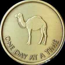 One Day At A Time Camel Serenity Prayer Bronze Sobriety Medallion Coin AA Chip