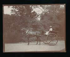 Social History c1900 photograph lady in pony & trap 110x85mm