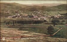 Livingston Manor NY General View of Homes and Hills c1910 Postcard