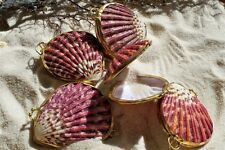 Scallop Seashell Coin or Pill Box  priced each