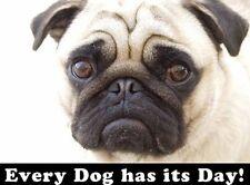 Cada Perro tiene su día Pug Cachorro-Letrero De Metal Tin Placa otros listados 449
