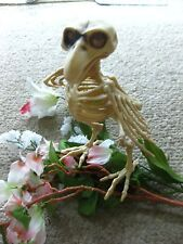 SKELETON BIRD PIRATE HALLOWEEN DECORATION TWEETY BONES POSE WINGS BEAK CROW PROP