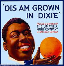 """Umatilla Florida """"Dis Am Grown in Dixie"""" Orange Citrus Fruit Crate Label Print"""
