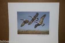 1982 North Dakota Duck Stamp Print - Signed & Numbered Limited Edition