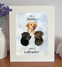 """Labrador Retriever 'Life is Better' 10"""" x 8"""" Mounted Picture Print Image Gift"""