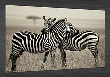 """HD Canvas Print Abstract home decor wall art painting,Zebra 24""""x36""""(NO Stretch)"""