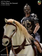 ACI 1/6 H04 White War Horse For Gladiator General and French Crusader General