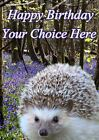 Hedgehog All Occasions A5 Personalised Greeting Card Birthday PIDFF7 With GIFTS