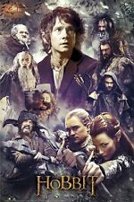 THE HOBBIT MOVIE POSTER ~ FACES 24x36 Desolation Of Smaug Bilbo Legolas Tauriel