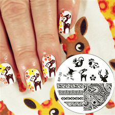 Nail Art Stamping Schablonen Stempel Nagel Template Image Plate BORN PRETTY 35