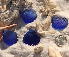 2 pcs~Sea Glass LARGE Clam Shell Pendant Beads~ROYAL BLUE ( 29x27mm)~ 2 pcs.
