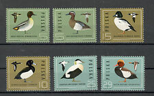 POLAND-MNH**  SET-FAUNA-BIRDS-DUCKS-1985.