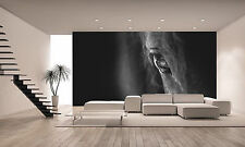Horse Wall Mural Photo Wallpaper GIANT DECOR Paper Poster Free Paste