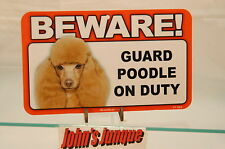 POODLE BROWN~BEWARE DOG SIGN~LAMINATED CARD~NEW~SCANDICAL~FREE US SHIPPING~