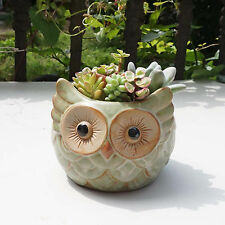Ceramic pots owl Cacti Succulent Plant Pot Flower Planter Mini Garden Design