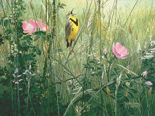 """""""Song of the Meadow"""" Stephen Lyman Open Edition Giclee Canvas - Meadowlark"""