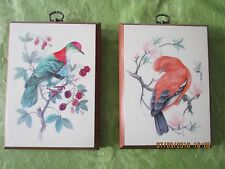 hand painted exotic bird pictures on wood boards Cock of the Rock & Fruit Pigeon