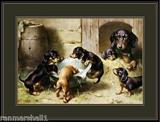 Vintage English Print Dachshund Dog Puppies Dogs Puppy Poster Art Picture