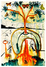 Alices Adventures in Wonderland 8 A2 by Salvador Dali High Quality Canvas Print