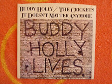 BUDDY HOLLY/CRICKETS It Doesn't Matter Anymore 45 rpm PICTURE SLEEVE ONLY 1978