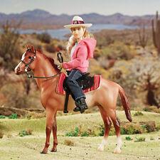 Breyer Horse and Western Rider Set
