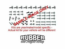 1966 1967 Dodge Charger Interior Screw Kit - 179 pcs.